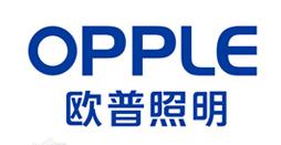 欧普照明股份有限公司电话会议系统